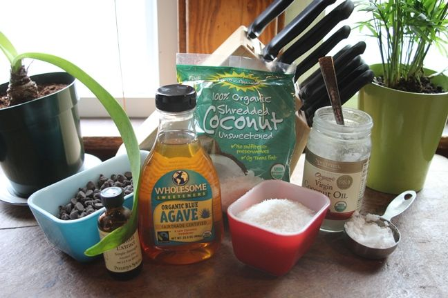 Chocolate Coconut Bites Ingredients